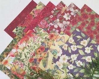 Susan Winget Designer Paper