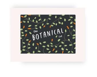 Botanical card packs - botanical plant stationery