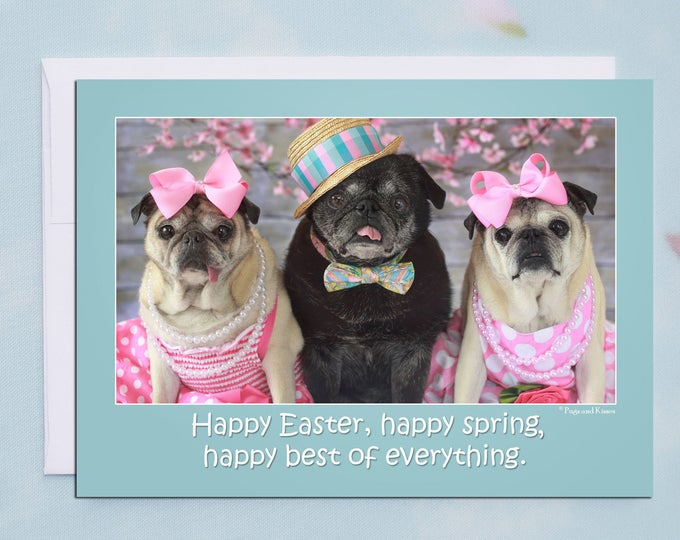 Happy Easter, Happy Spring 5x7 Pug Easter Card by Pugs and Kisses