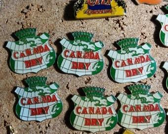 Vintage Canada Dry Enamel Pin