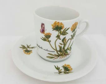 Vintage Cup and saucer by krone star bavaria. In good condition with butterfly and inscription Anthyllis Vulneruria