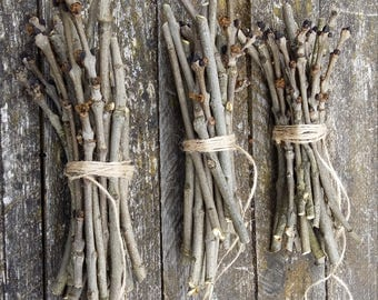 Ash branches European ash tree twigs sticks sacred wood magic spells wicca witchcraft pagan druid celtic Fraxinus excelsior primitive decor