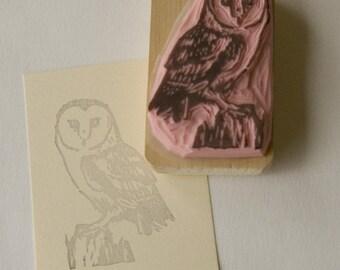 Ref. 105 Barn owl / Chouette effraie
