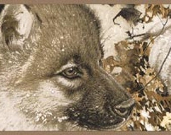 Wolf Wolves GL76357 Wallpaper Border