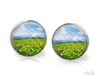 Earrings spring 51