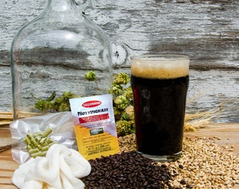 Dry Irish Stout - Do It Yourself 1-gallon All Grain Recipe Kit