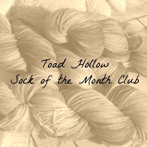 Sock yarn club, Yarn of the month club, YOTMC,mystery club,fingering weight yarn,imaginary destinations,toad hollow yarn club,hand dyed yarn