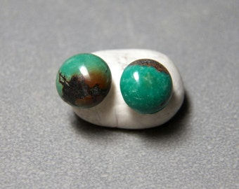 10mm Green Turquoise Gemstone Post Earrings with Sterling Silver