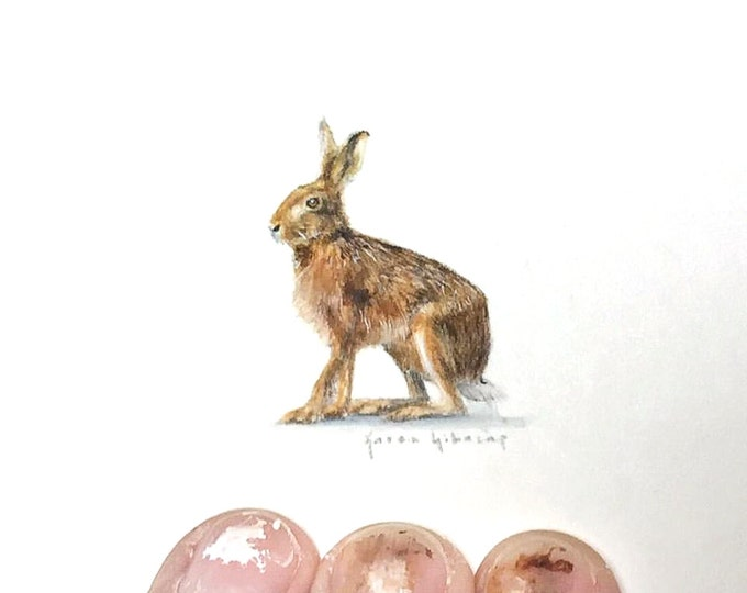 Original Miniature painting of a Hare tiny painting, Jack Rabbit tiny art 5 x 5