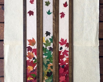 THE SKINNY Pressed Maple Leaf Falling Picture; Mixed Green. Black or Walnut Frame. Perfect for any nature lover. Canadian! Celebrate Spring