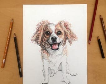 Custom Pet Portraits - Dog Art - Cat Art - Hand Drawn - Portrait Artist - Commission Drawing - Pet Lover Gift - Pet Memorial Portrait