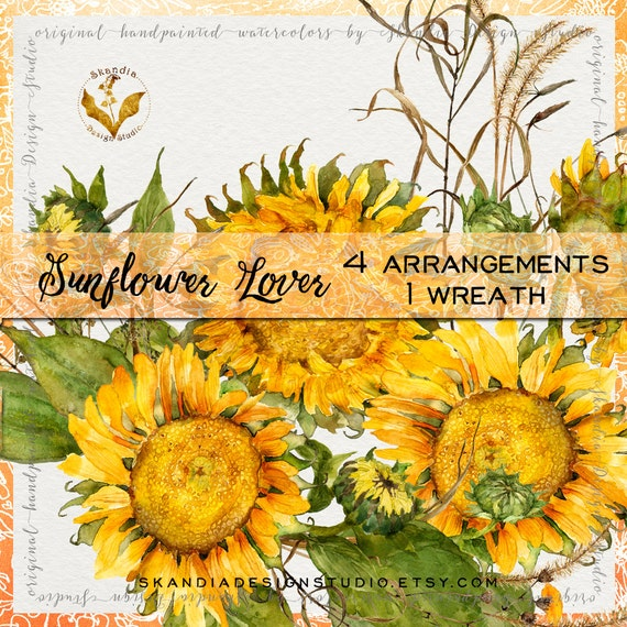 Watercolor Sunflowers Sunflower Clipart Flowers Fall Floral