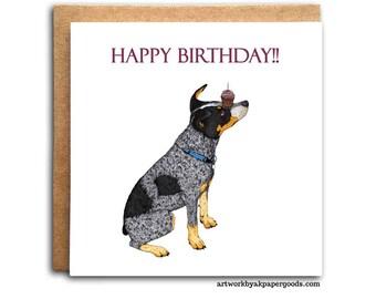 Australian Cattle Dog Birthday Card Blue Heeler Red Heeler