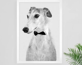 Greyhound print, black and white photography, greyhound wall art, greyhound poster, greyhound photo, digital print, greyhound art, dog print