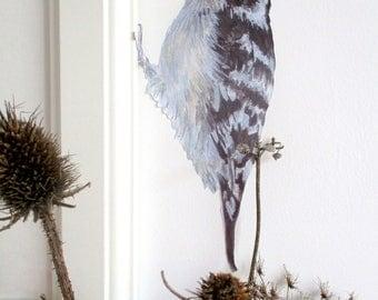 Woodpecker wall decal, bird decor, bird wall stickers, bird wall decals, woodland wall decals, woodpecker gifts, lesser spotted woodpecker