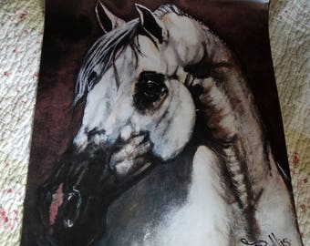 Beautiful White Stallion Horse Poster