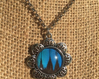Blue Swallowtail Real Butterfly Flower Necklace