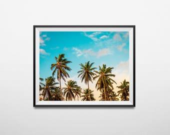Palm tree print, palm tree art, palm print, tropical print, palm tree, palm tree photo, palm leaf print, palm tree decor, palms, summer