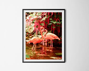 Flamingo Print, Pink Print, flamingo art, flamingo, pink flamingo, fashion print, romantic print, bird print, flamingo download, love print