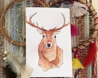 Elk Greeting Cards (Qty 4)