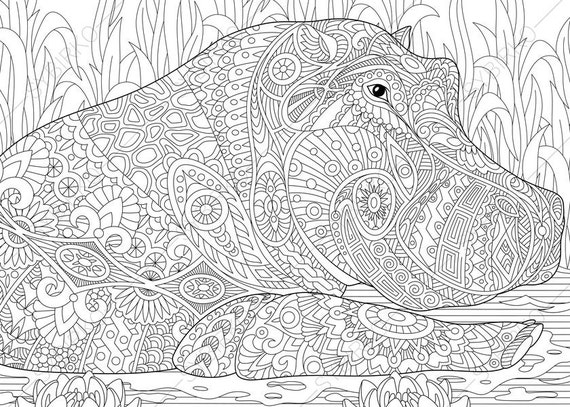 Adult Coloring Pages Hippo Hippopotamus Zentangle Doodle