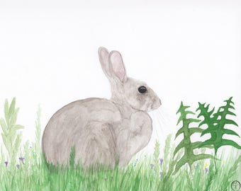Rabbit watercolor, rabbit painting, rabbit print, rabbit art, rabbit & ferns
