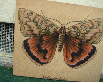 "MOTH vintage 70s wall art / ""Catocala electa"" Rosy Underwing vtg handmade trapunto wall decor, insect art, bug decor"