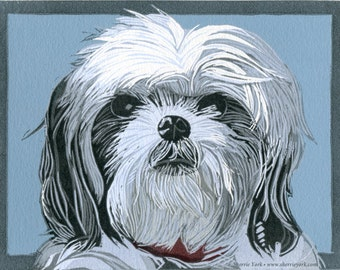 Rosebud, the Shih Tzu cutie