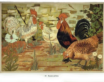 Roosters and Hens Art Nouveau Print, Rustic Country Kitchen Decor, Vintage Verneuile Book Page Illustration, Wall Art or Craft Paper Supply