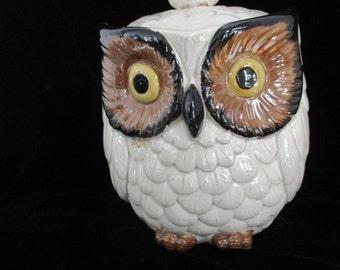 Owl Cookie Jar Mom & Baby Big Owl Eyes @@ Handmade Vintage Off White Ceramic Owls Clean Vintage