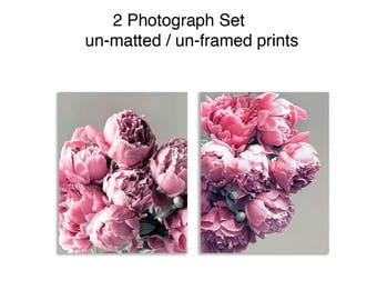 Peony Photography Set, Pink and Gray Decor, Set of 2 Prints, Blush Pink Flower Picture Set 8x10 Prints