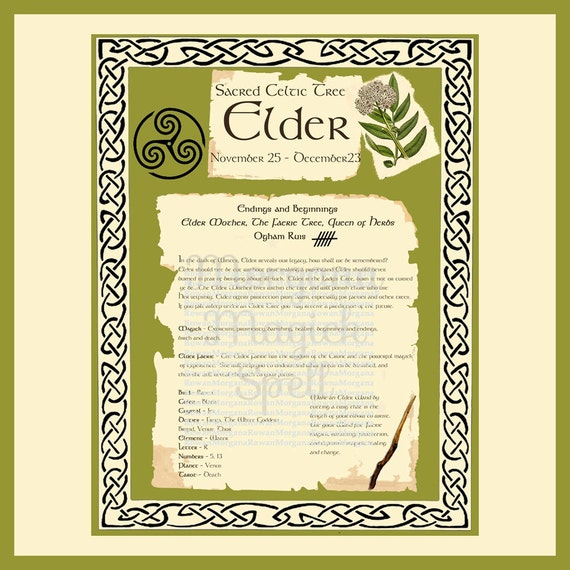 ELDER CELTIC SACRED Tree -  Digital Download, Book of Shadows Page,Grimoire, Scrapbook, Spells, White Magick, Wicca, Witchcraft, Herb Magic