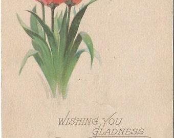 Pink Tulips Dutch Tulip Springtime EASTER Greeting Vintage Postcard