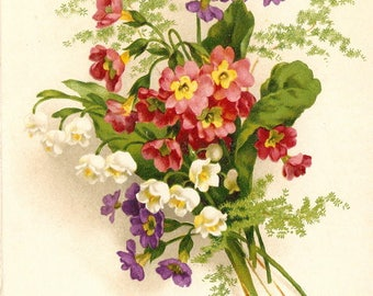 Lily of the Valley Violets & Pink Flowers Bouquet Antique French Postcard Chromolithograph Chromo Post Card from Vintage Paper Attic