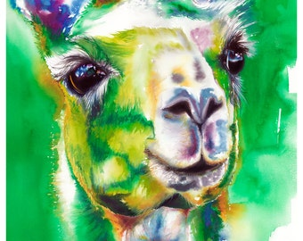 "5x7"" Llama Watercolor Giclee Fine Art Print [Watercolor Llama Print, Llama Print, Llama Art, Green Art, Watercolor Art]"