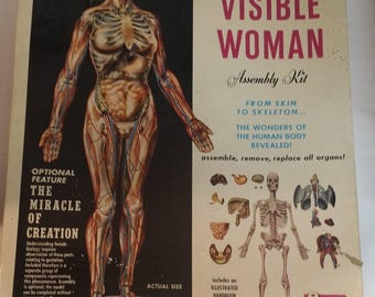 Vintage Renwal Visible Woman with Miracle of Creation and Organs but No Skeleton -- 1960 Anatomical Model, Science Fair, Art Assemblage