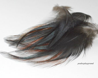 Iridescent Black with red edge Rooster hackle BB 3-4 inch long spear 28 count