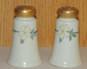 Japan Ceramic Salt and Pepper Shakers