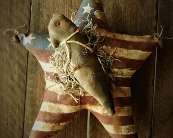 Primitive Grubby Americana Star and Crow Hanger