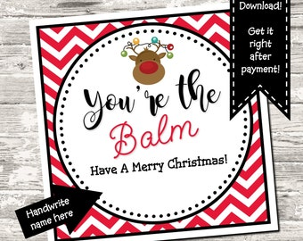 INSTANT DOWNLOAD Christmas You're The Balm Favor Tag Gift Tag Thank You Tag Digital Printable
