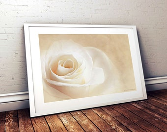 Flower Print Wall Art, Master Bedroom Wall Decor Print, Rose Photo Print, Home Decor Wall Art, Unique Birthday Gift