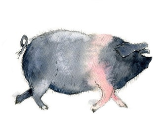 Limited edition print - Dorothy the pig