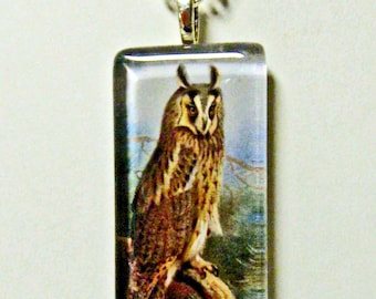 A long eared owl pendant and chain - BGP02-005