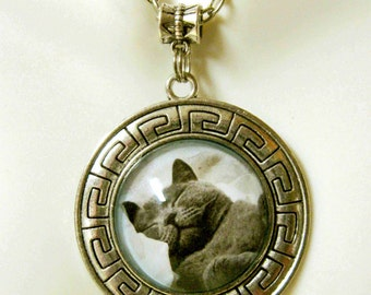 This is the life gray kitty pendant with chain - CAP26-001