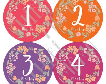 Baby Girl Stickers, Baby Floral Stickers, Monthly Flower Stickers, Colorful Monthly Stickers, Baby Flower Stickers, Baby Month Stickers