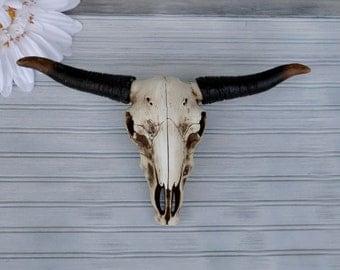 Longhorn Skull Etsy