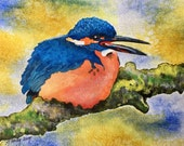 Blue Kingfisher Original ...
