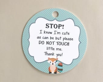Don't Touch Baby, Car seat Tag, Baby Tag, Do Not Touch Sign, New Mom Gift, Baby Shower Gift, Baby