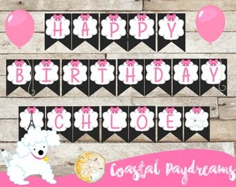 Paris-Paris Party Banner-Paris Party-Paris Party Supplies-Custom Banner-Party Banner-Paris Theme-Girls Birthday-Paris Party Package