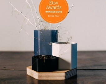 3D PRINTED pots - vase - desk organizer - pen holder - magnetic wood base - for cactus - stationery - made by 3d printing and cnc cutting